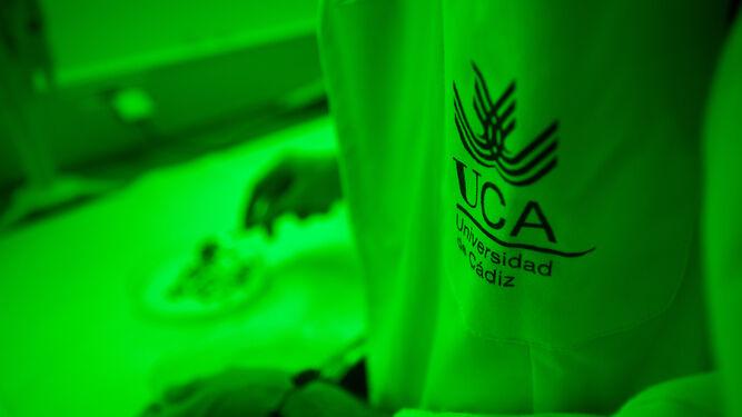 La UCA aparece en un ranking entre las 150 mejores universidades del mundo en Oceanografía